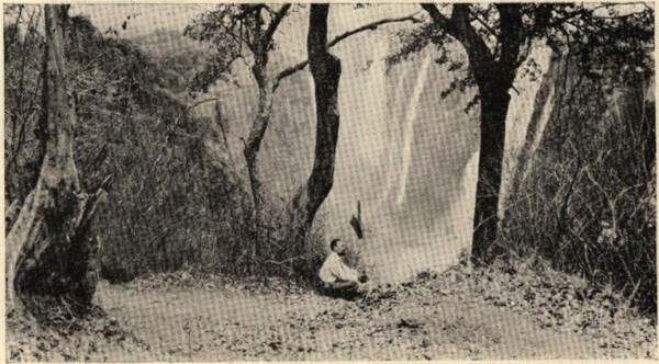 K. Pakštas planting the Lithuanian flag near the Victoria Falls